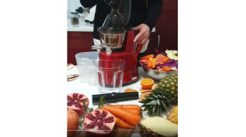 Violeta present ORIGINAL by lifeenergy slow juicer